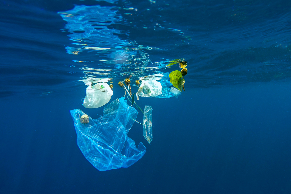 More plastic than fish in the ocean?